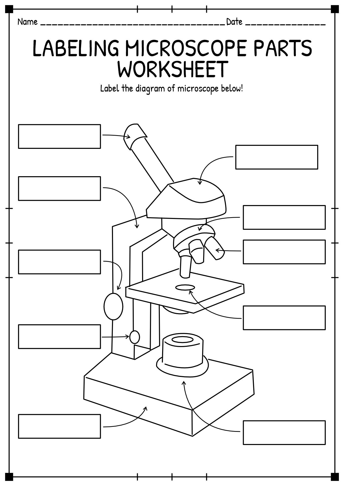 blank microscope diagram to label 89 honda civic radio wiring 11 best images of light worksheet
