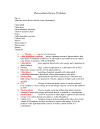 17 Best Images of Photosynthesis Review Worksheet