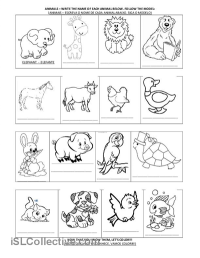 15 Best Images of Animal Family Classification Worksheets ...