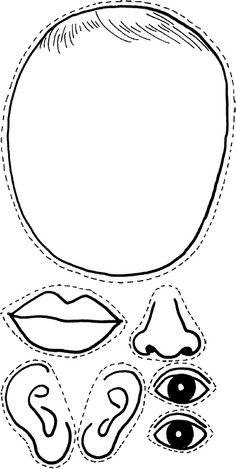 12 Best Images of Eye Parts Worksheet Printable