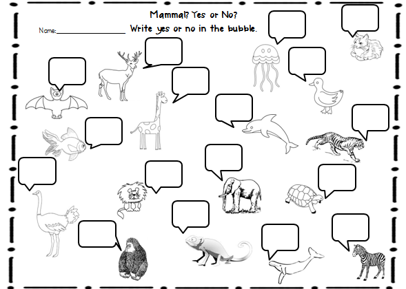 15 Best Images of Animal Family Classification Worksheets