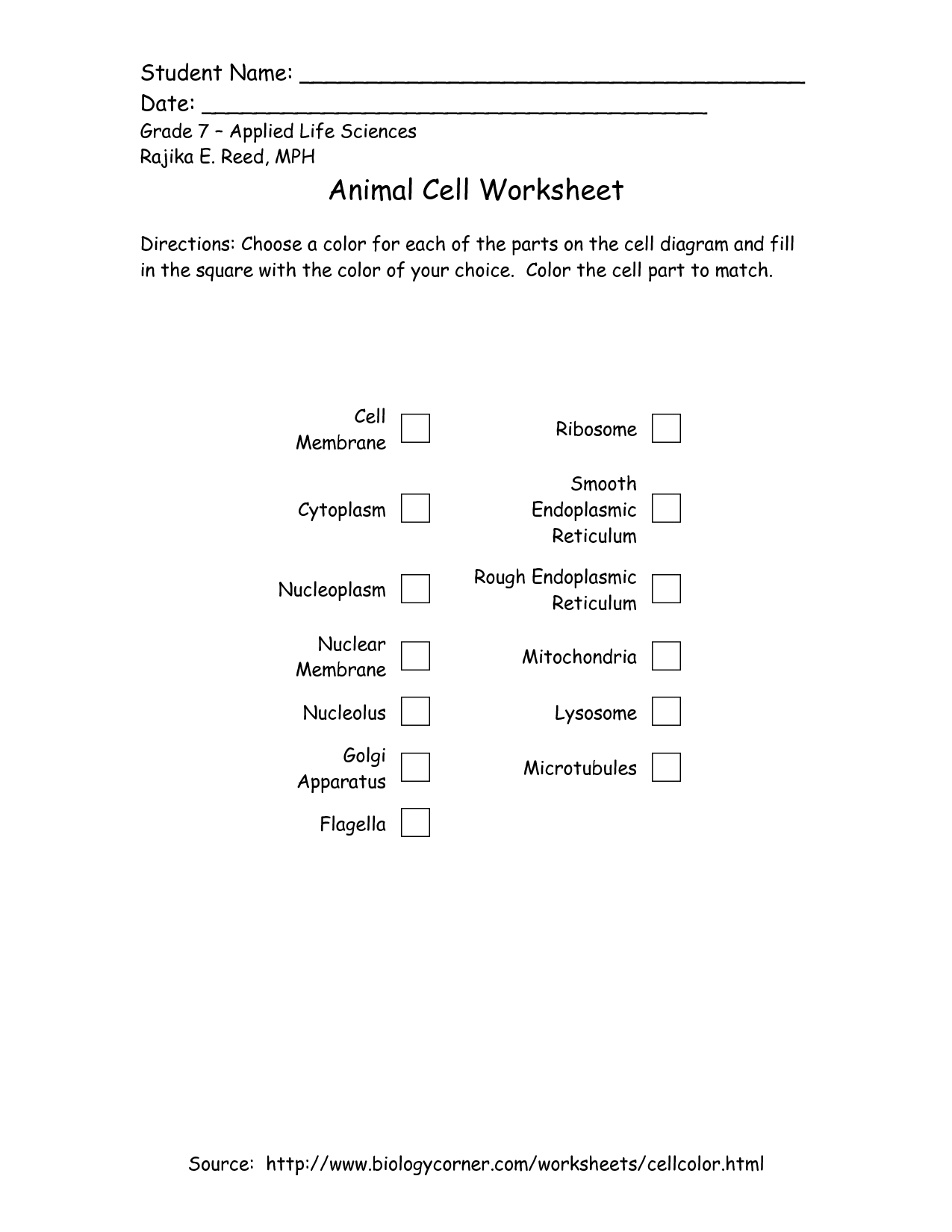 15 Best Images Of Plant Cell Worksheet 5th Grade