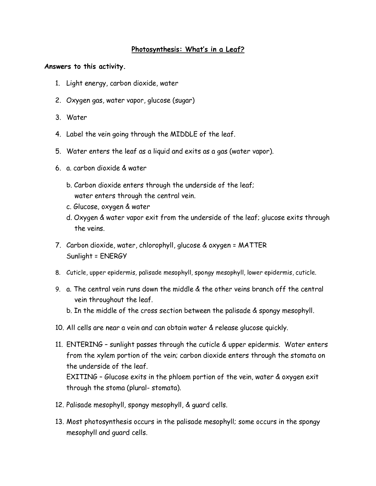 Photosynthesis Fill In Worksheet Key
