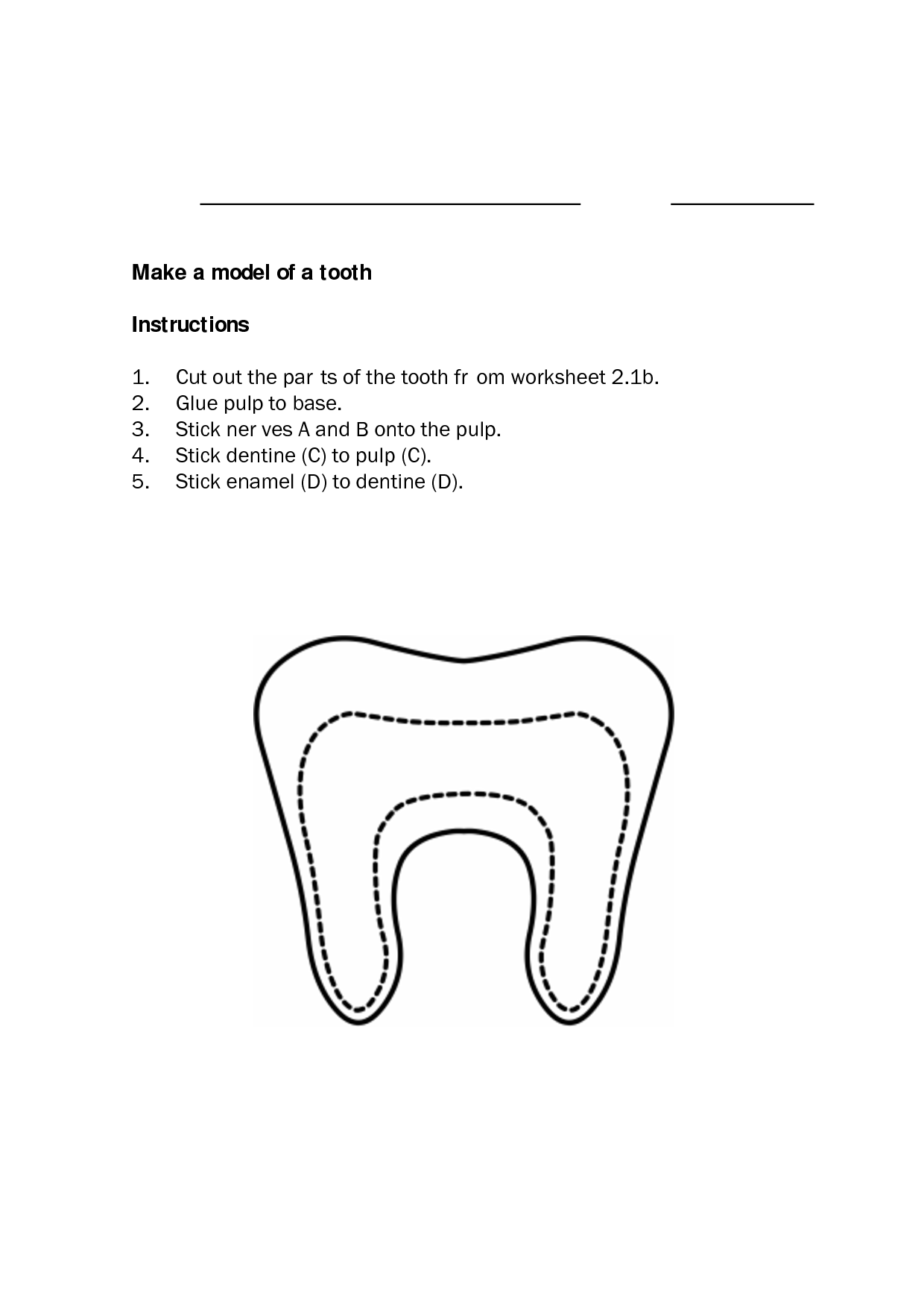 10 Best Images Of Parts Of The Tooth Worksheet
