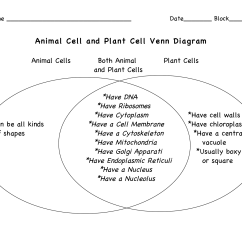 Animal Cell Coloring Diagram Answers 12 Valve Cummins Fuel System 16 Best Images Of Earth Science Worksheets