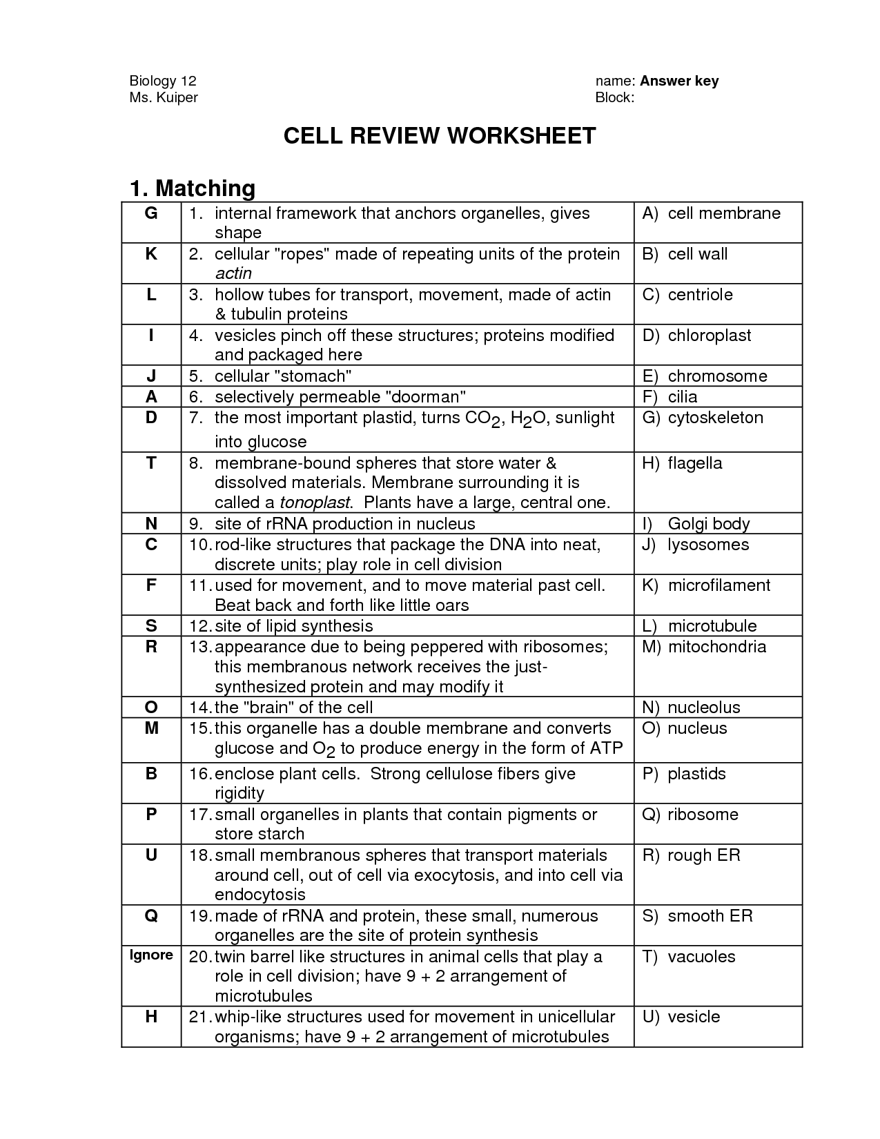 18 Best Images Of Biology Cells Worksheets Answer Keys