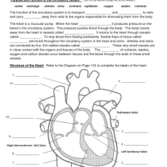 Respiratory System Blank Diagram To Label Energy Level For Carbon 11 Best Images Of Heart Worksheet With Word