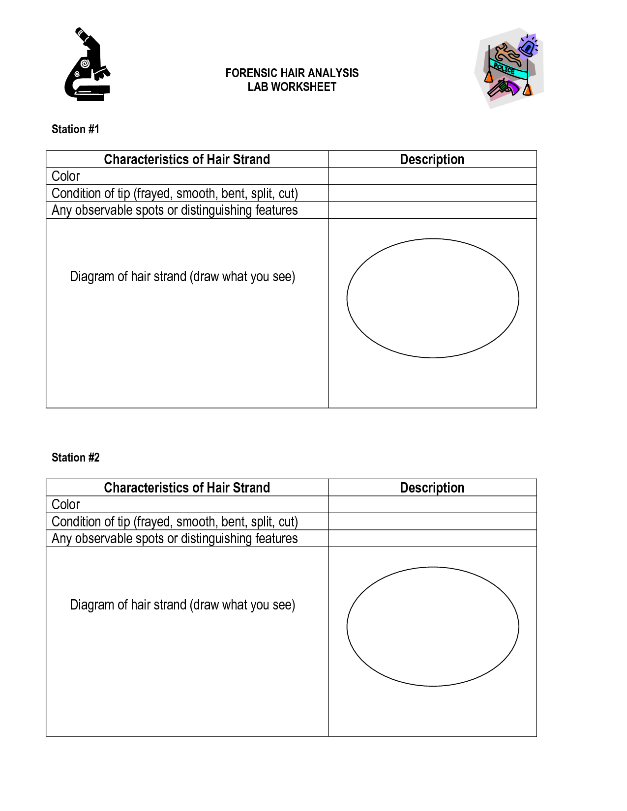 14 Best Images Of Hair Evidence Worksheet Activity