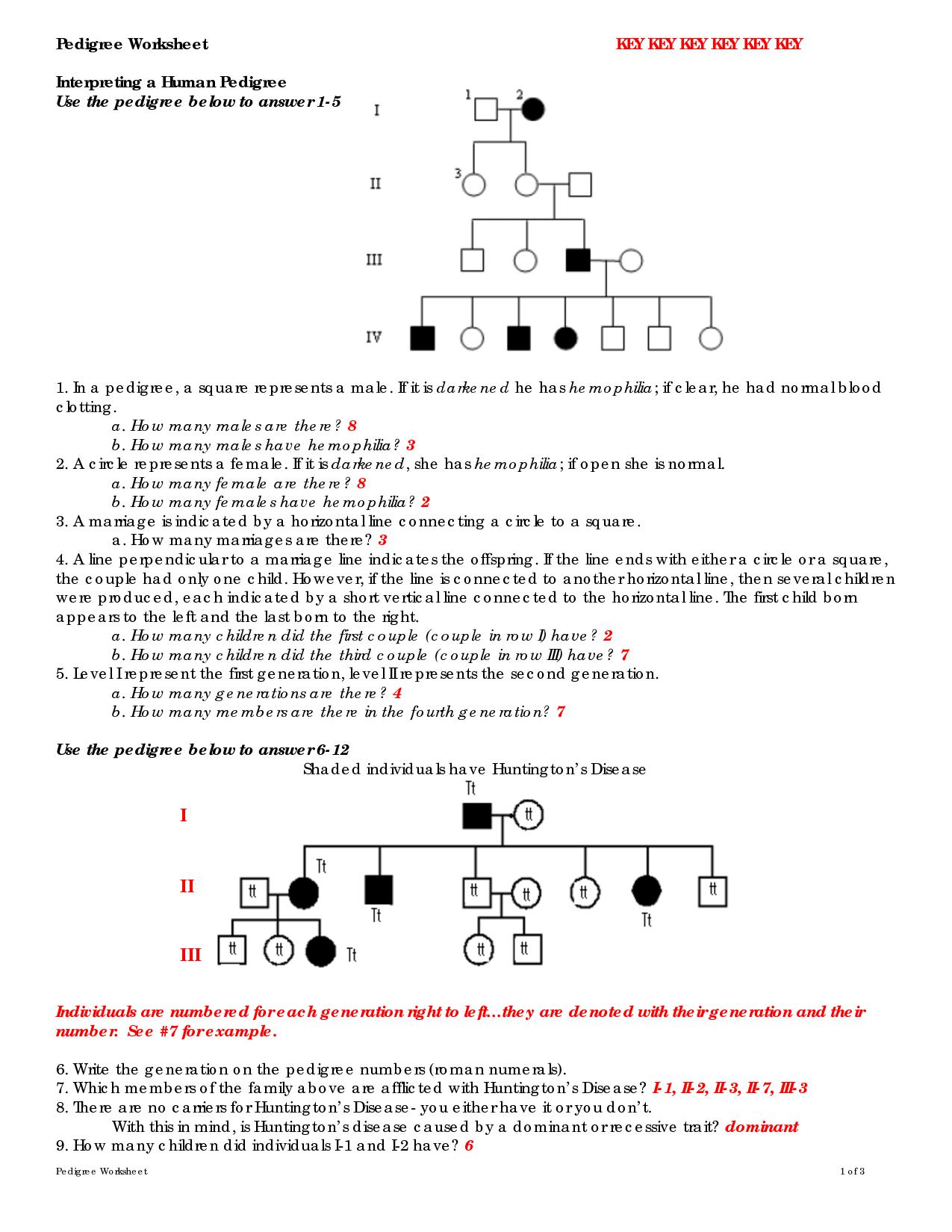 Human Pedigree Genetics Worksheet Key