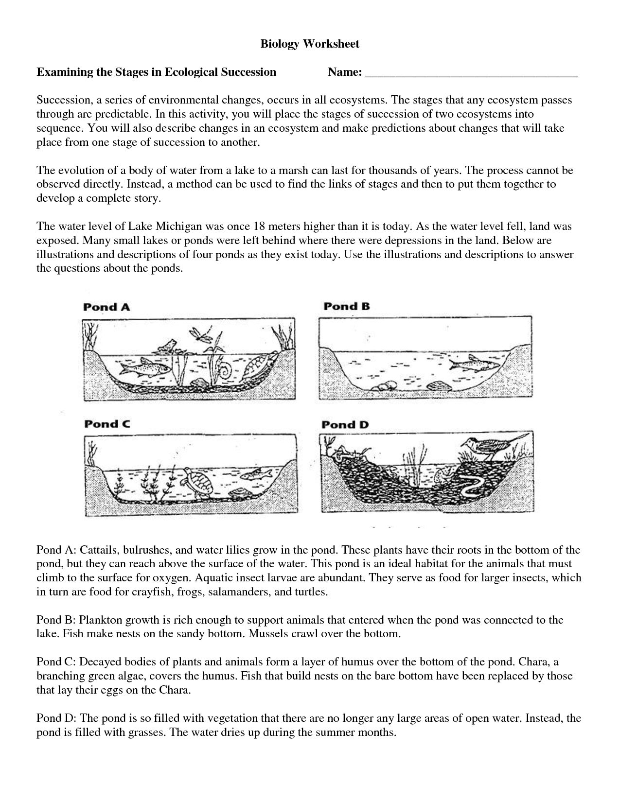 14 Best Images Of High School Biology Worksheets