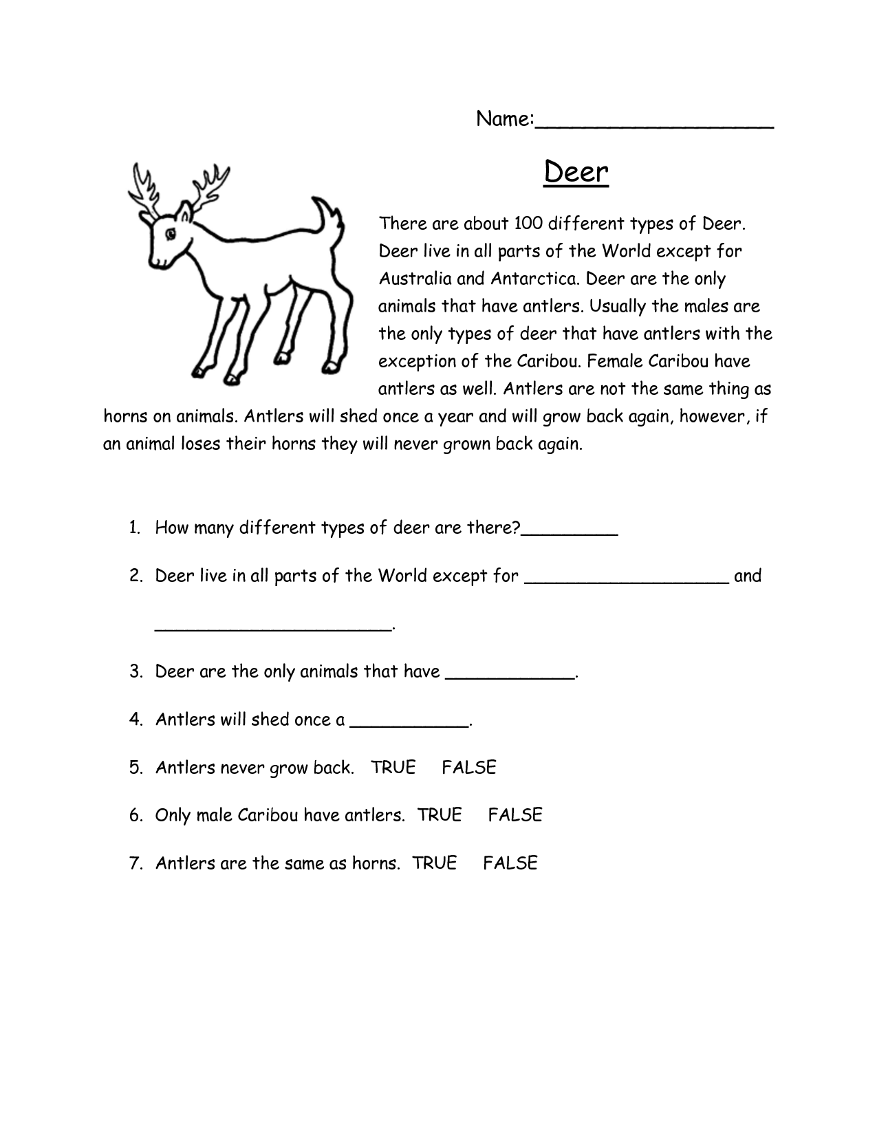 Reading Comprehension Worksheet For Middle School Free