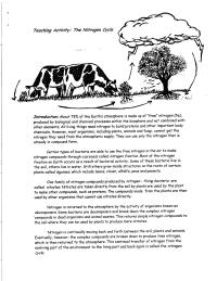 worksheet. The Nitrogen Cycle Worksheet. Grass Fedjp ...