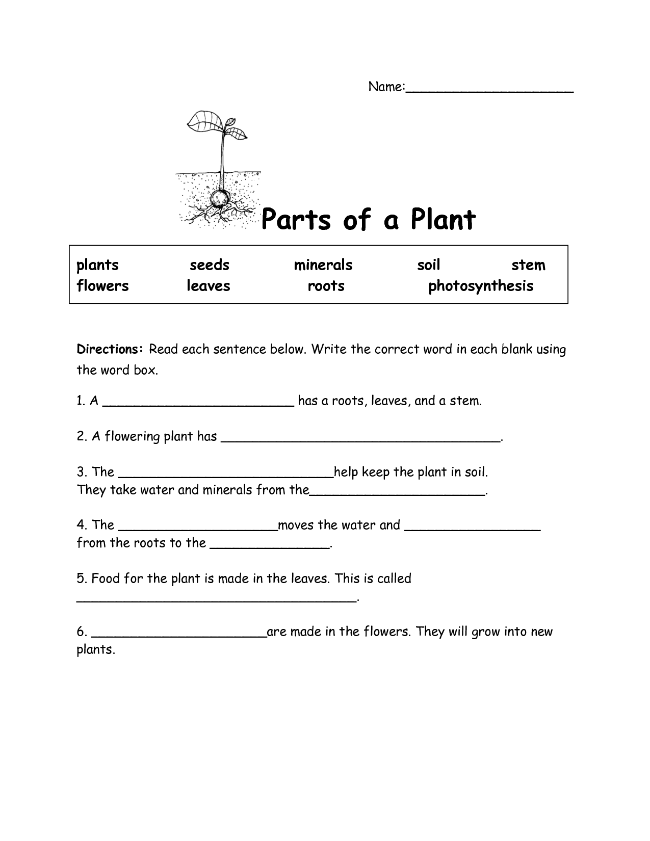 parts of a plant diagram worksheet jayco tent trailer wiring 19 best images flower 4th grade