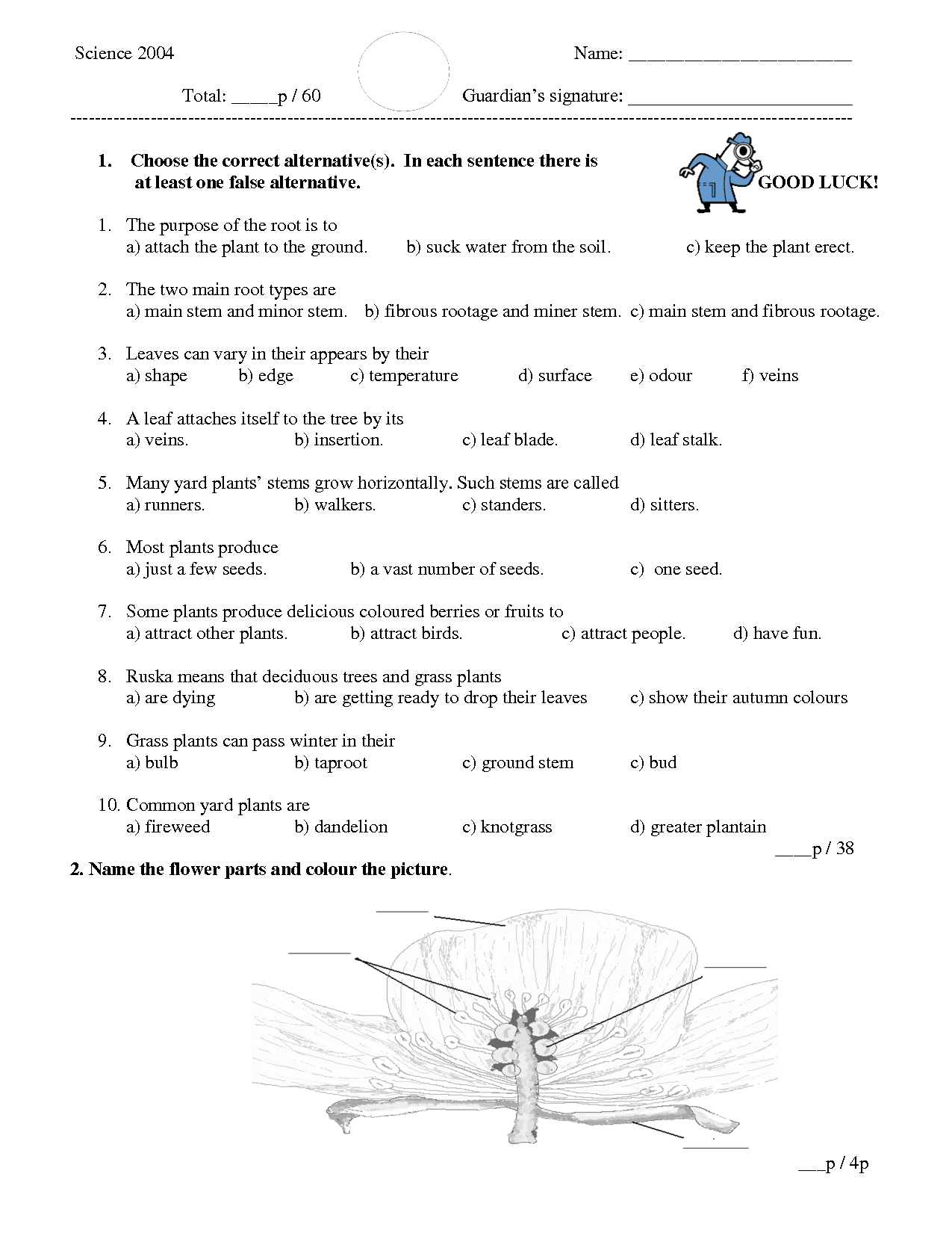 Trivia Questions For Third Graders