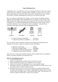 13 Best Images of Dichotomous Key Worksheets - Leaf ...