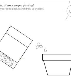 printable flower parts worksheet image collections 19 best images of plant worksheets for kindergarten  [ 1133 x 908 Pixel ]