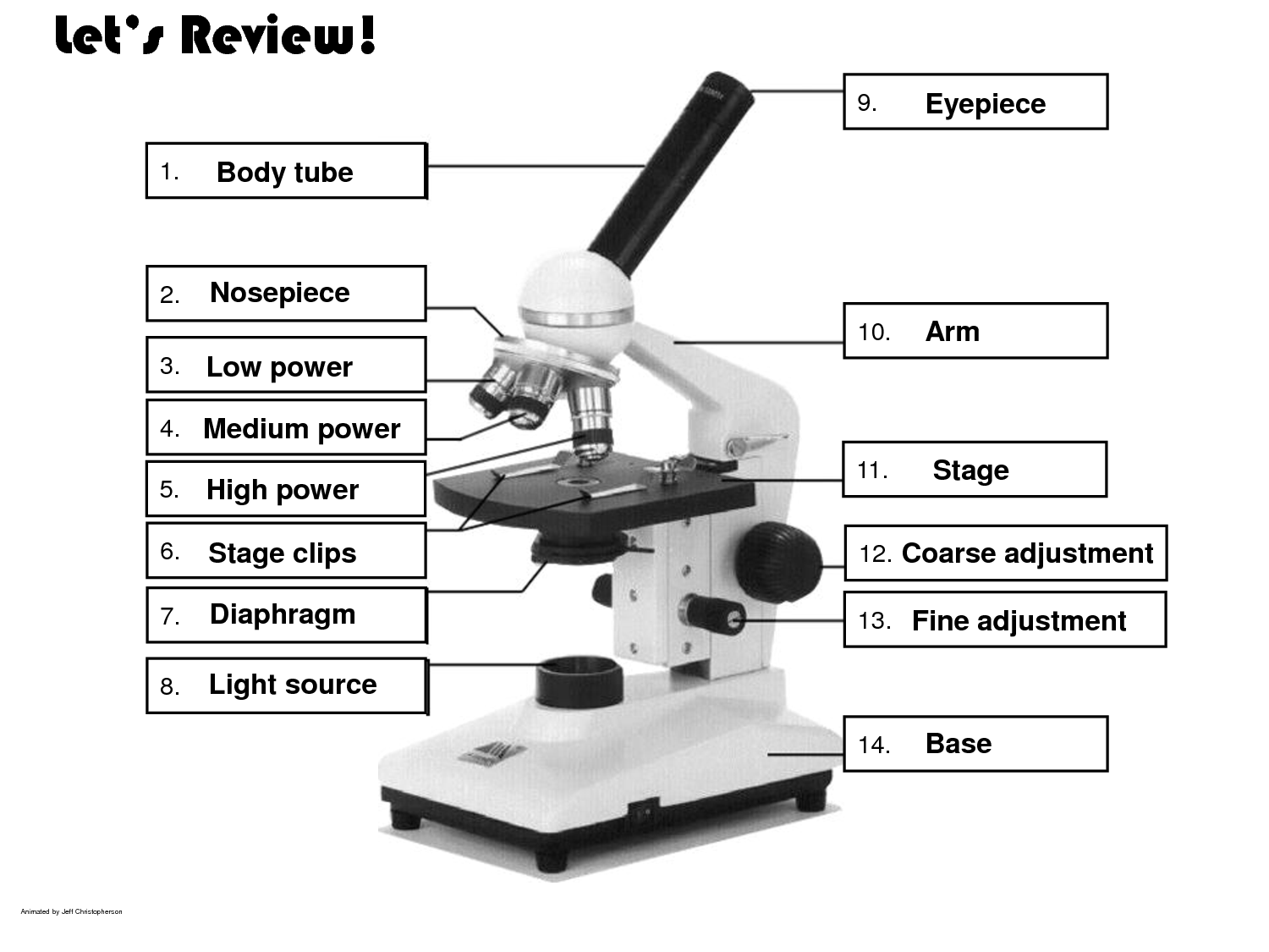 Dissecting Microscope Parts And Functions