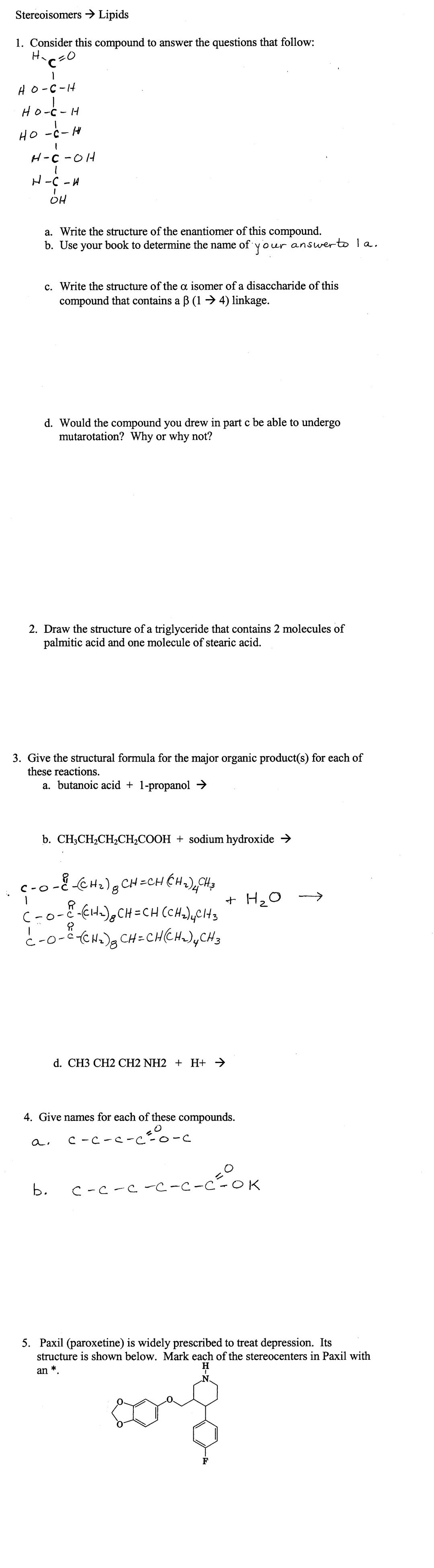 7 Best Images Of Carbohydrate Lipid And Worksheet