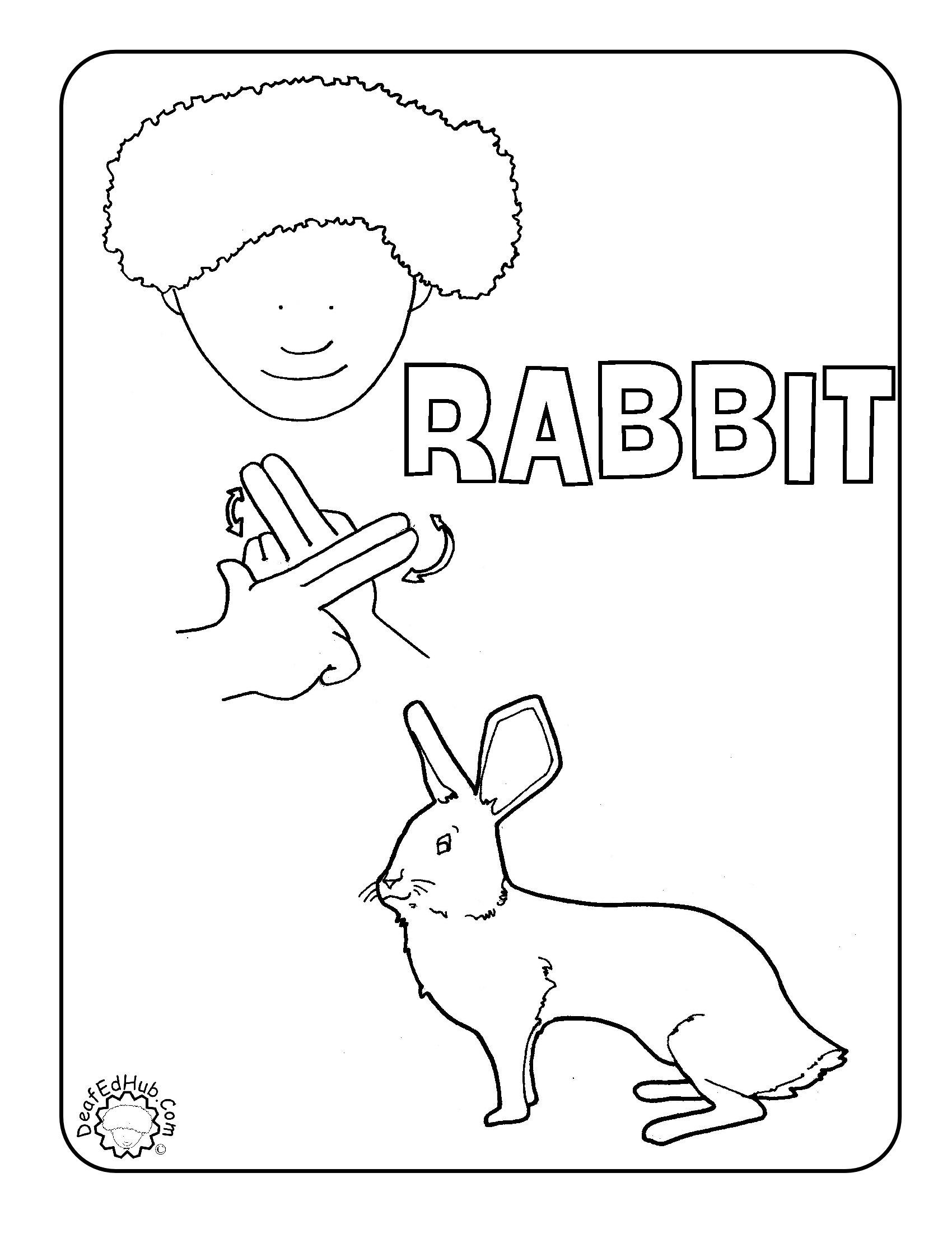 15 Best Images Of Proper Noun Coloring Worksheet