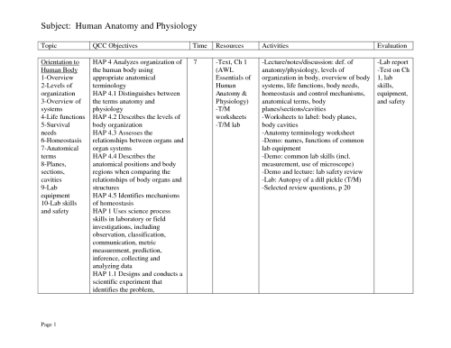 small resolution of human anatomy and physiology worksheets