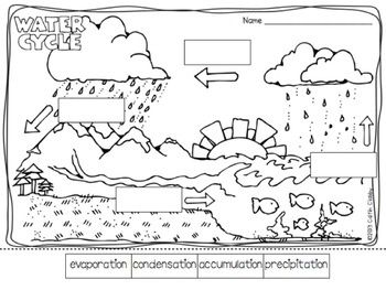 14 Best Images of Water Worksheets For Middle School