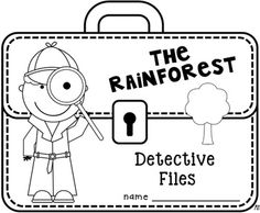 Rainforest Worksheets For Second Graders. Rainforest. Best