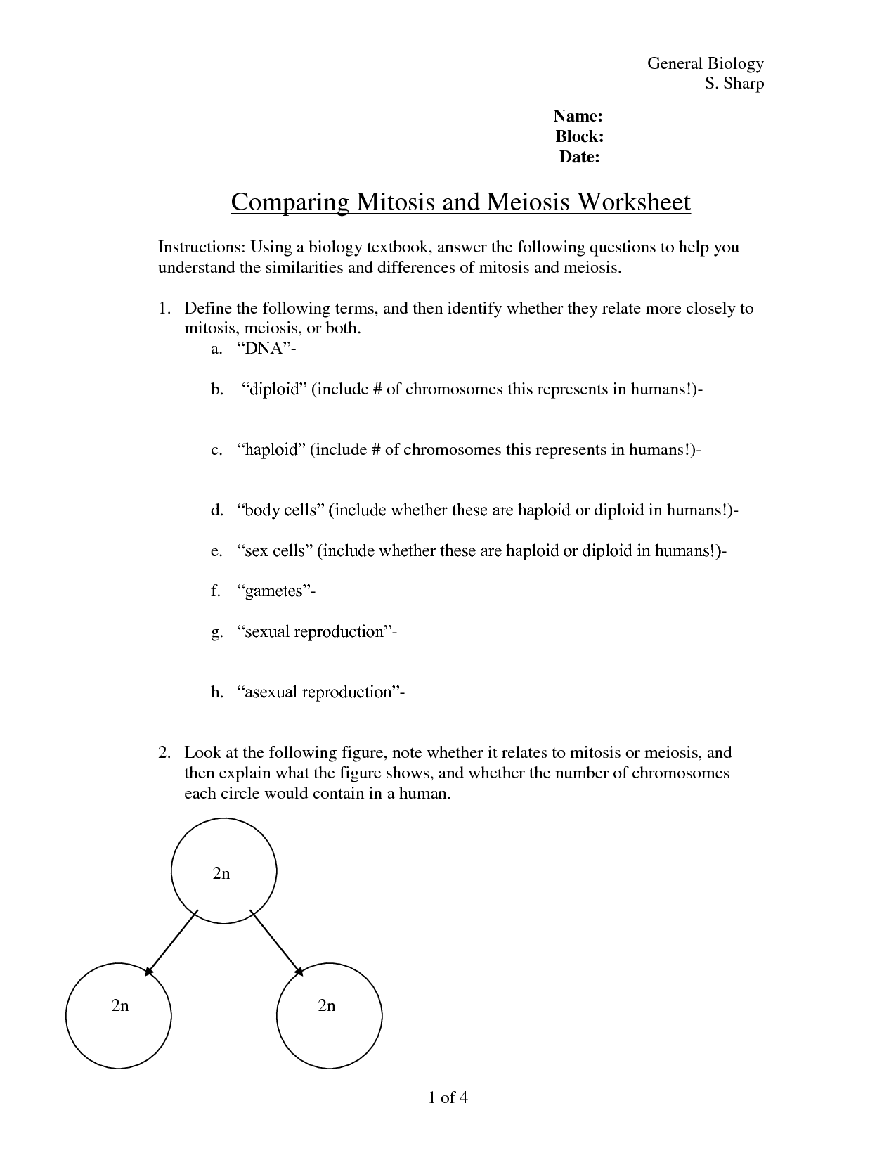 13 Best Images Of Comparing Mitosis And Meiosis Worksheet Answers
