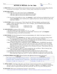 13 Best Images of Comparing Mitosis And Meiosis Worksheet ...