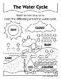 15 Best Images of Chapter 9 Cellular Respiration Worksheet