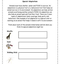 Plant Adaptations Worksheet Grade 3   Printable Worksheets and Activities  for Teachers [ 2200 x 1700 Pixel ]