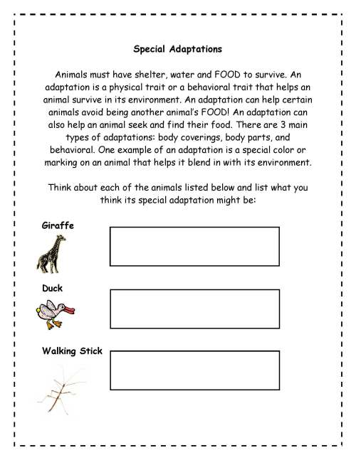 small resolution of Plant Adaptations Worksheet Grade 3   Printable Worksheets and Activities  for Teachers
