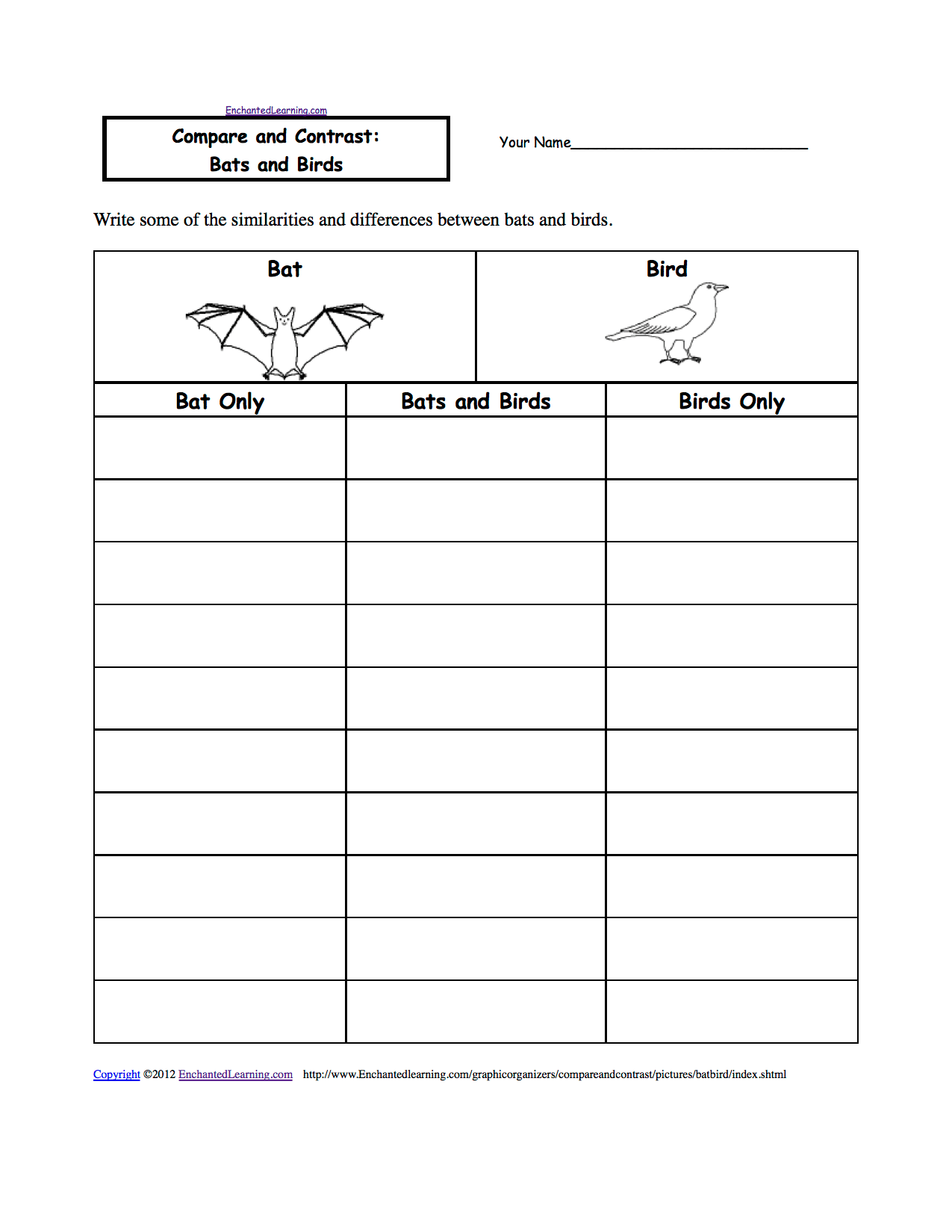 14 Best Images Of Wild Animal Preschool Worksheets