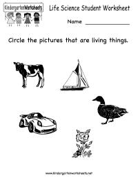 18 Best Images of Best Science Worksheets - Free Printable ...