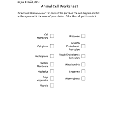 7th Grade Cell Diagram Viper 5901 Remote Start Wiring 13 Best Images Of Parts A Plant Worksheet