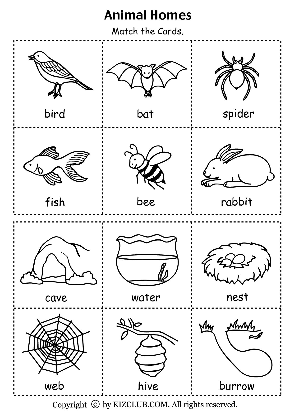8 Best Images Of Animal Homes Worksheet Kindergarten