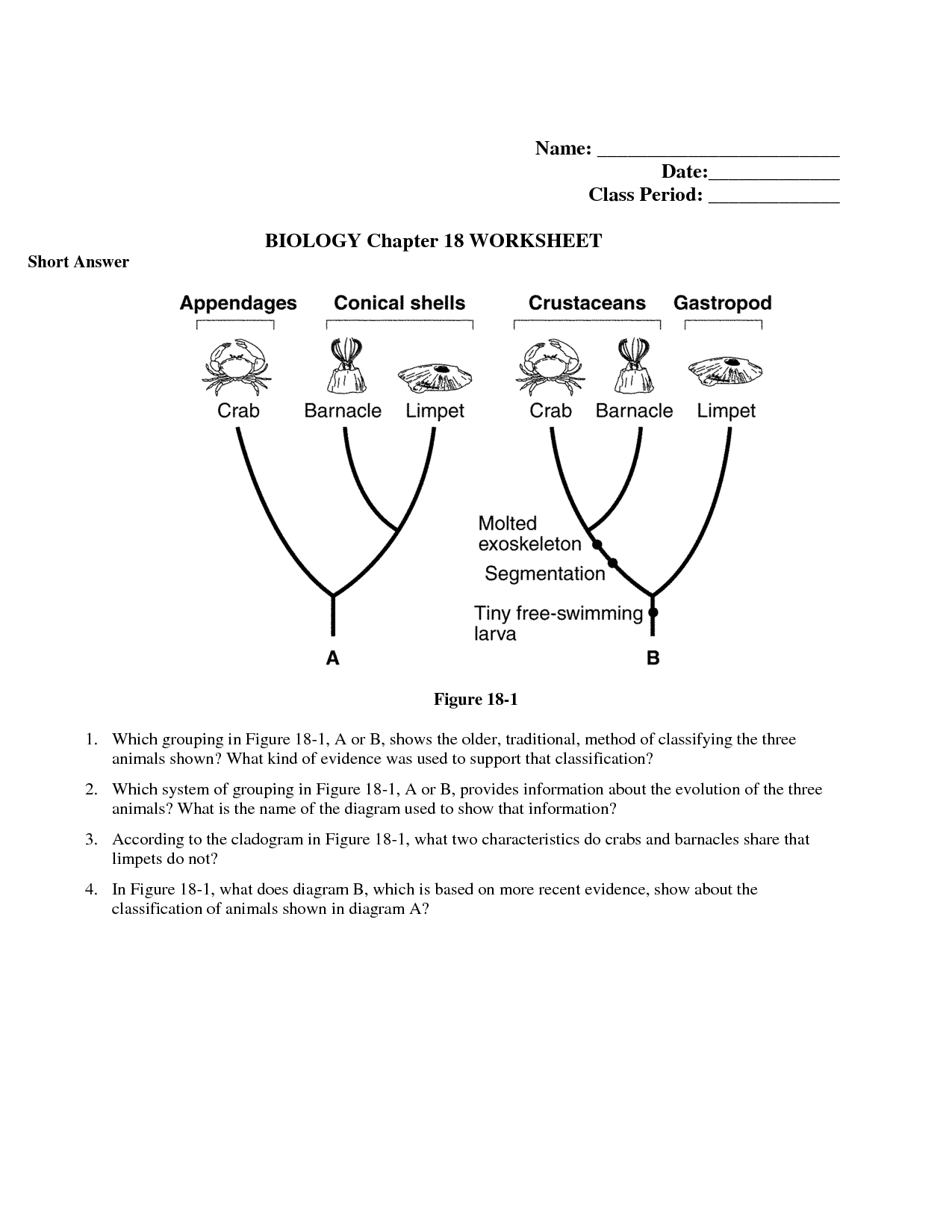 33 Taxonomy Worksheet Chapter 15 Answers