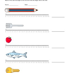 Measurement Worksheet With Ruler   Printable Worksheets and Activities for  Teachers [ 3300 x 2550 Pixel ]