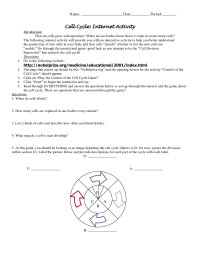 18 Best Images of Cell Cycle Review Worksheet - Cell Cycle ...