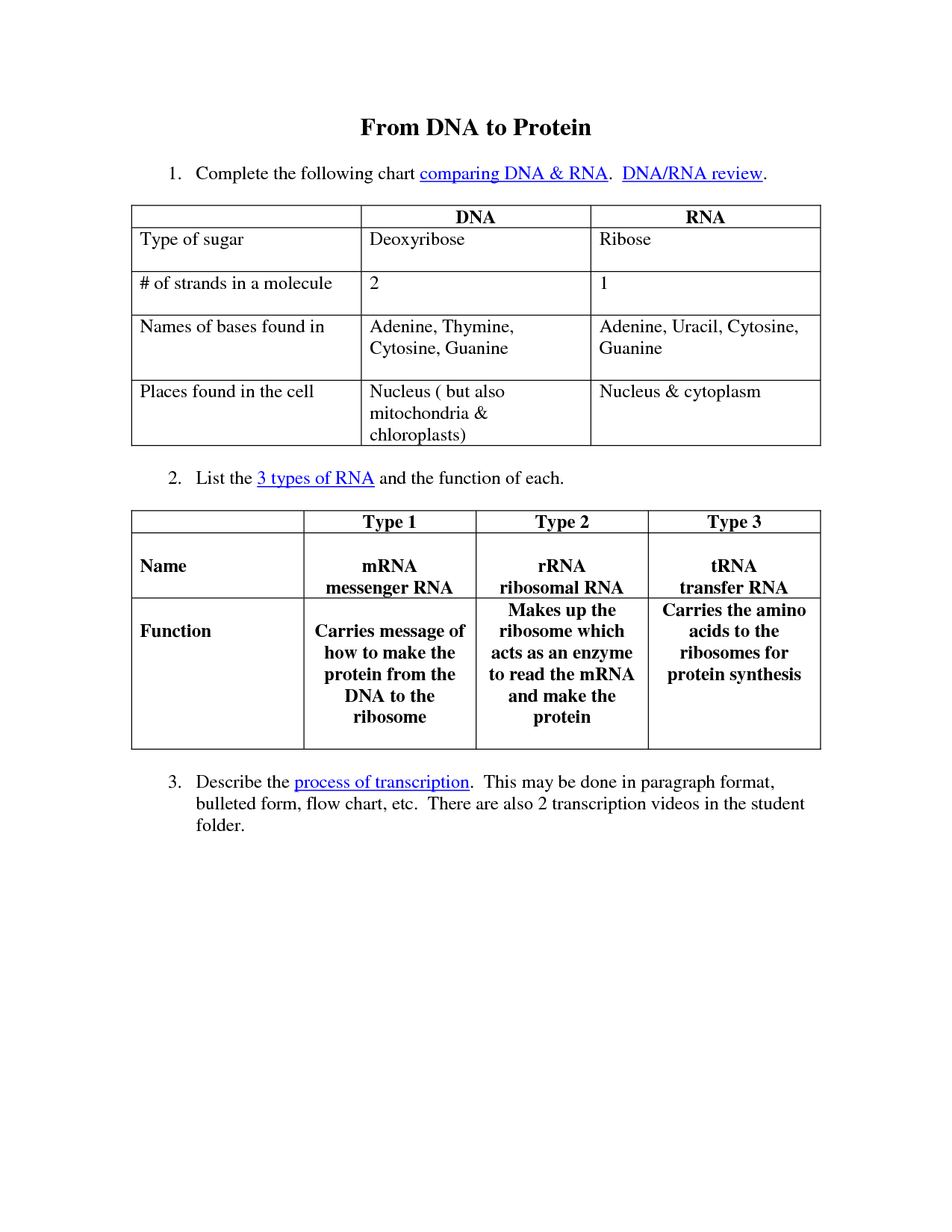 Comparing Dna Replication And Transcription Worksheet Answers