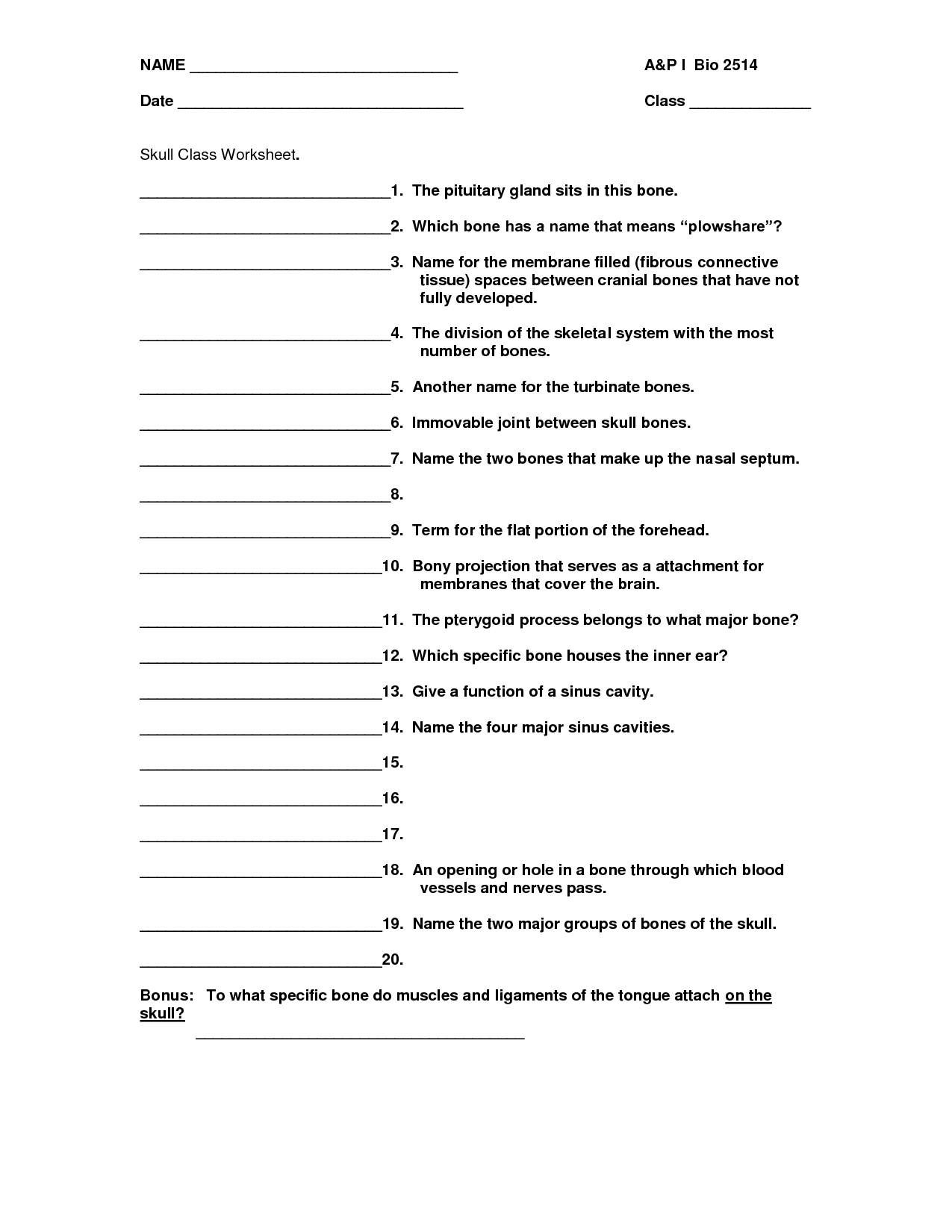 17 Best Images Of For Tissues And Membranes Worksheets