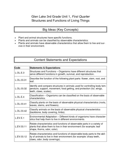 small resolution of Free Printable Energy Worksheet 3rd Grade   Printable Worksheets and  Activities for Teachers