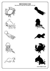 17 Best Images of Shadows Kindergarten Science Worksheet