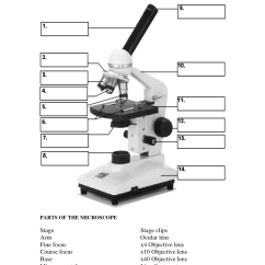 A Diagram Of Microscope Parts Ford Falcon Stereo Wiring 12 Best Images Light Worksheet
