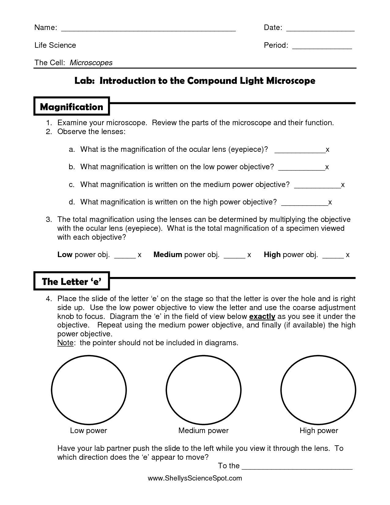 12 Best Images Of Light Microscope Parts Worksheet