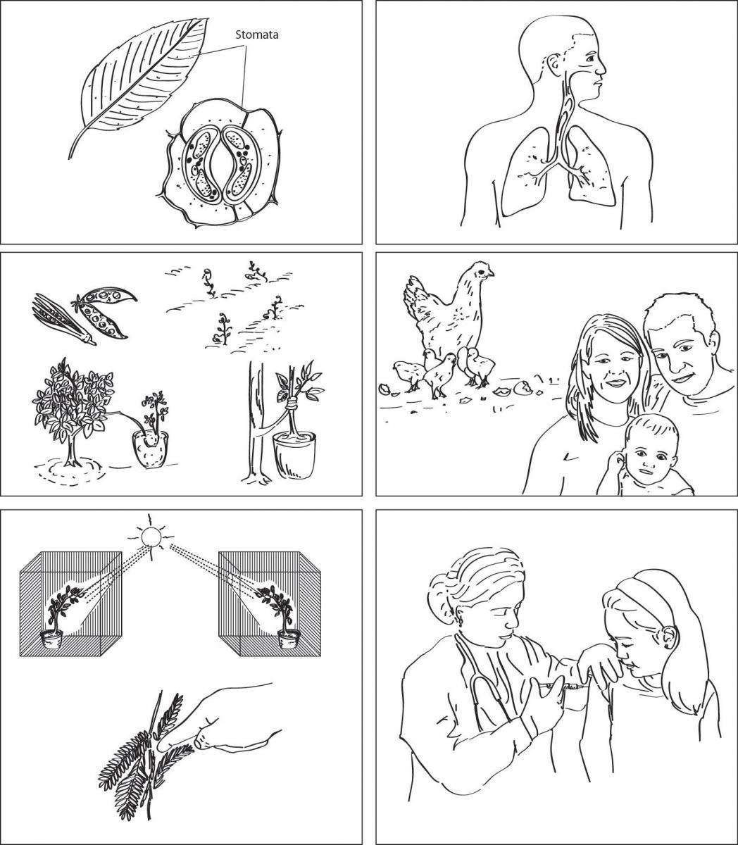14 Best Images Of How I Feel Worksheet