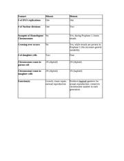 16 Best Images of Steps Of Meiosis Worksheet Answers ...