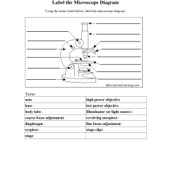 Diagram Of A Microscope And Functions Its Parts Delta Table Saw Wiring 14 Best Images Function Worksheet