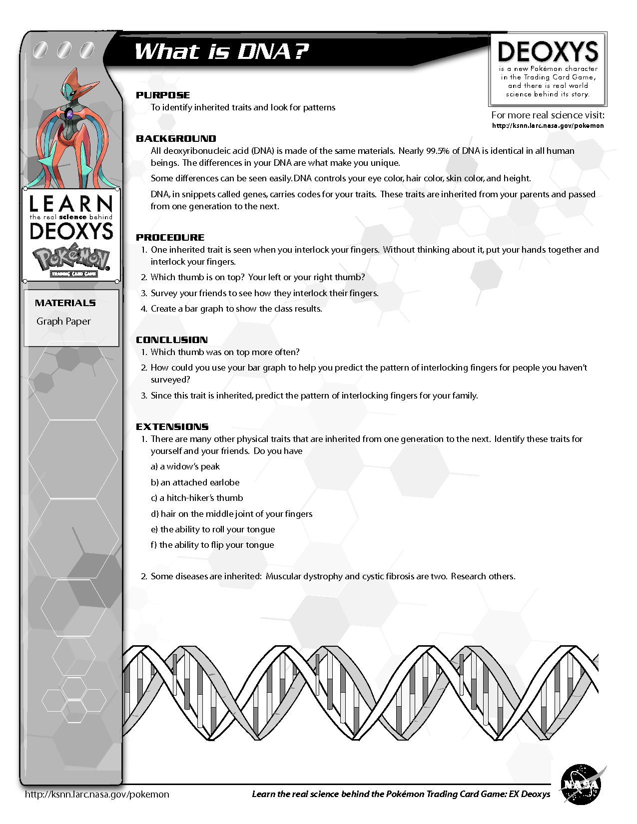 29 Structure Of Dna And Replication Worksheet