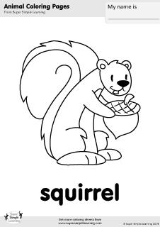 12 Best Images of Squirrel Worksheets For Kindergarten