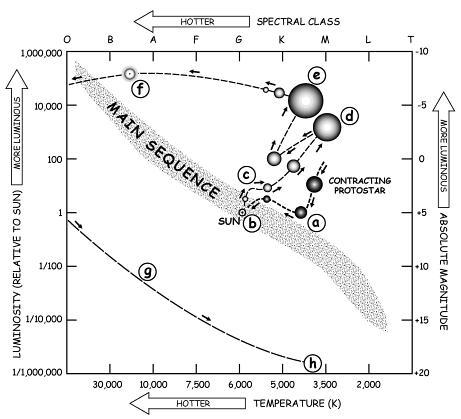17 Best Images of Astronomy Star Evolution Worksheet